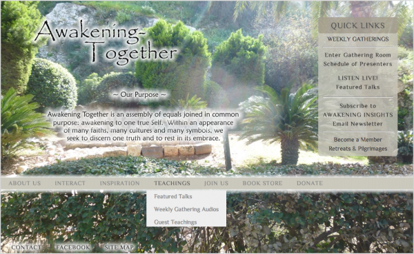Awakening-TogetherDOTorg-screensnap